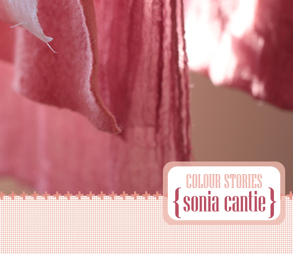 colour stories : Sonia Cantie | Emma Lamb