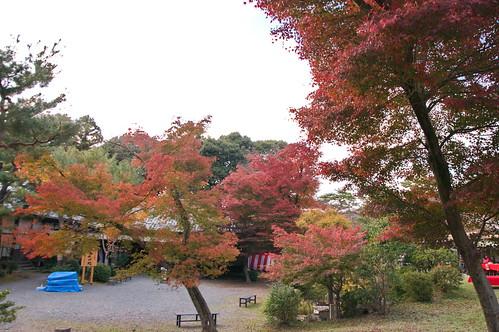 【写真】2012 紅葉 : 醍醐寺/2020-08-07/IMGP6872