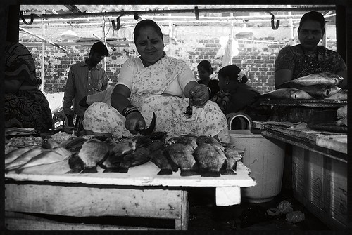 Bandra Fish Market Shot By Marziya Shakir 3 Year Old by firoze shakir photographerno1