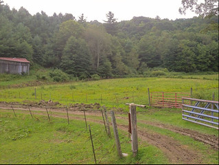 Ashe County Farm