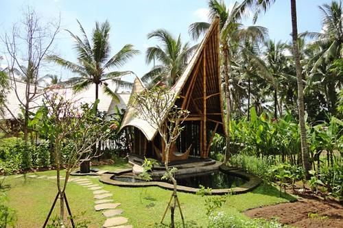 Bambus House v13