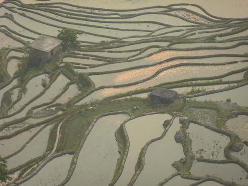 Yunnan13-Yuanyang 24-Bada (37)