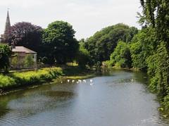 La Coquet, Warkworth, comté de NoWarkworth, comté de Northumberland, Angleterre, Royaume-Uni.rthumberland, Angleterre, Royaume-Uni.