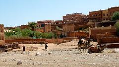 Morocco _DSC4182