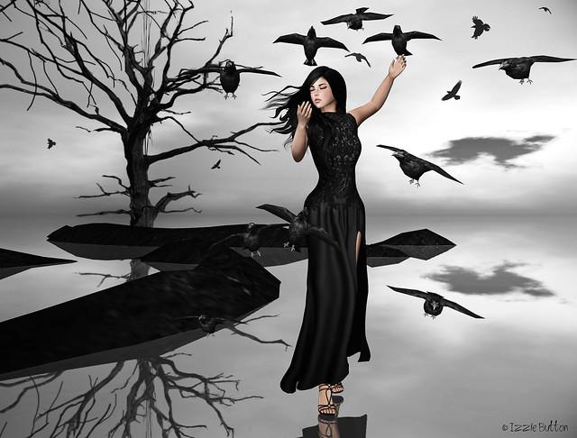 Fly My Ravens