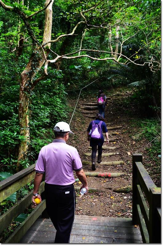 帽子山登山步道 1