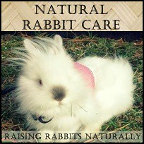 NaturalRabbitCare.com