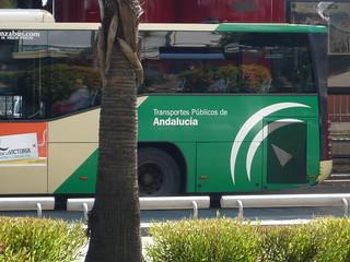 sandgelb und grün, die neuen Farben der Linienbusse