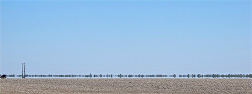 Drought affected wheat farm. Right next door to the cotton farm. Walgett, NSW.
