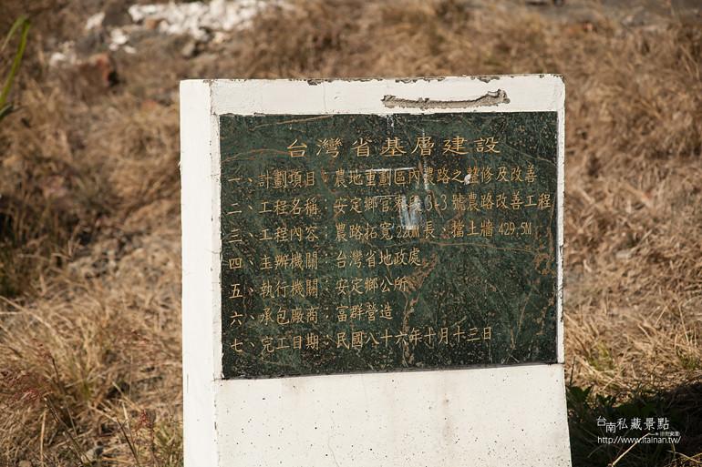 台南私藏景點--安定花海節2014 (17)