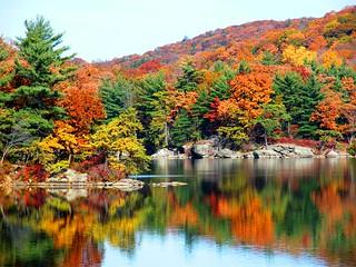 Seasons Beauty