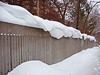 snow surf on fence