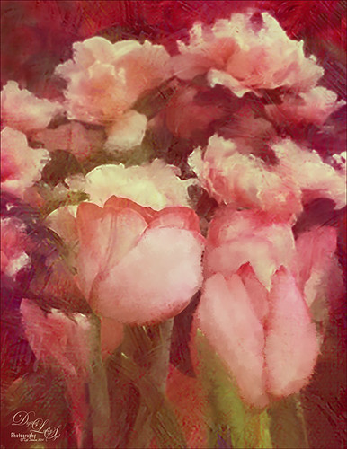 Image of pink tulips and roses painted with Mixer Brushes in Photoshop