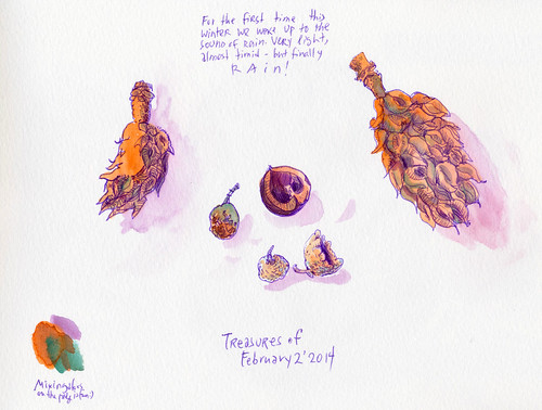 February 2014: Treasures by apple-pine