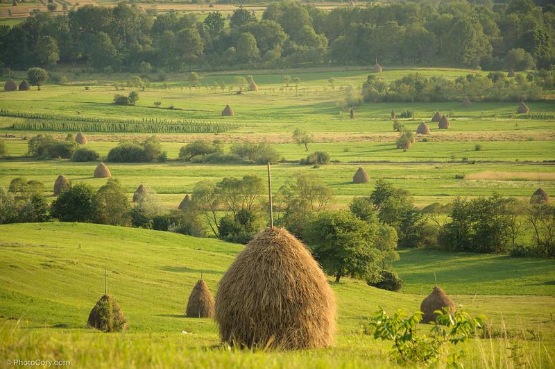 haystack in maramures, capite fan in maramures