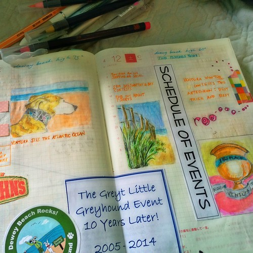 pages on my hobonichi cousin