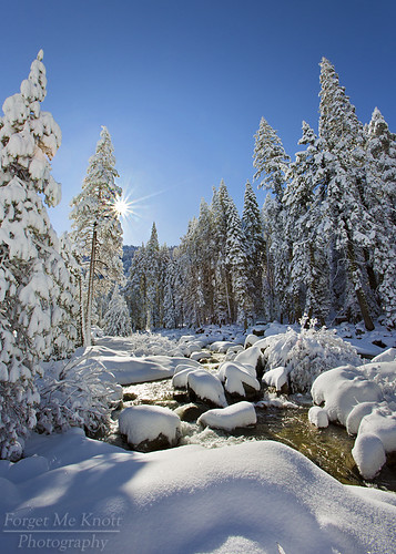 california trees snow storm water sunrise river dawn nationalpark fresh sierra sunburst np sequoia starburst kaweah lodgepole brianknott forgetmeknottphotography fmkphoto