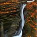 Watkins Glen State Park by A Antal
