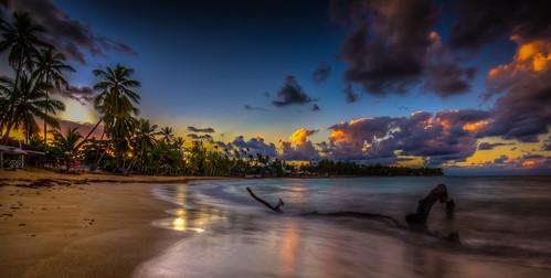 ocean sunset reflection water yellow dominican dominicanrepublic dr palmtree caribbean atlanticocean lasterrenas samaná