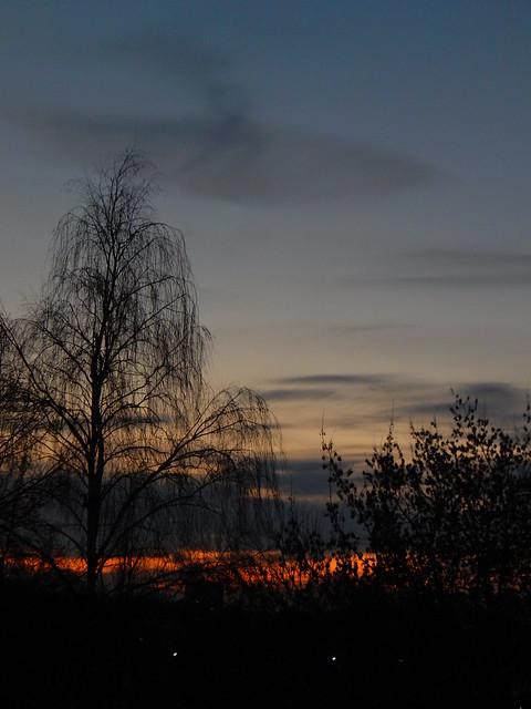 закат над кузьминскими прудами