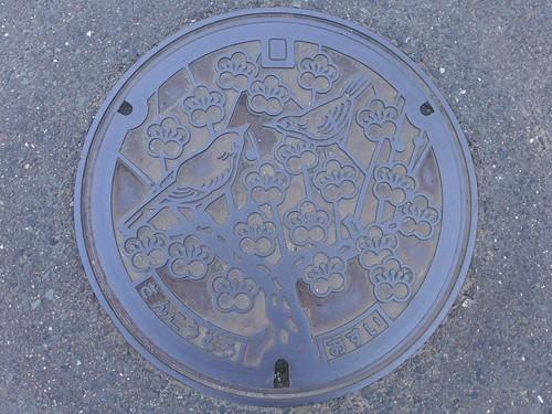 Sanko Oita, manhole cover (大分県三光村のマンホール)