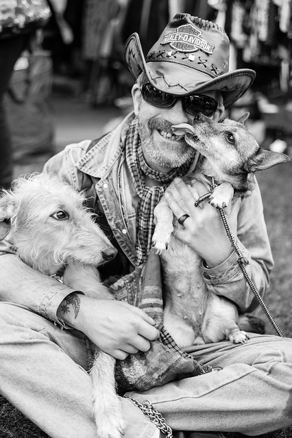 One man and his dogs