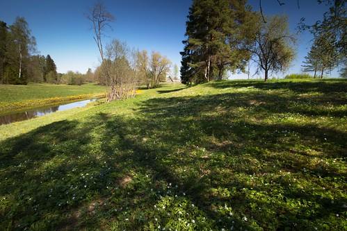 nature spring loodus jõgi kevad varsakabjad nurtu nurtunõlva