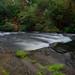Stream @ Wainuiomata Reservoir by Jose David