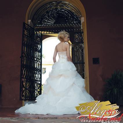 Свадебный салон  «ALEGRIA» > Фото из галереи `Divina Sposa`