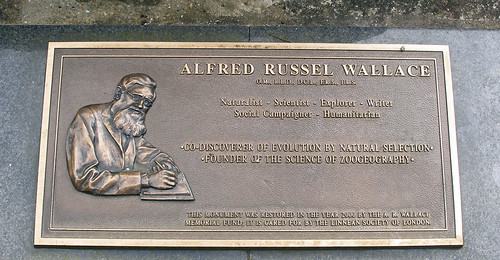 plaque on grave of Alfred Russel Wallace