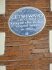 "P1020390 Cetchwayo Zulu King ""Blue plaque"""