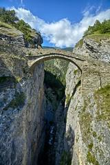 We should build a bridge here