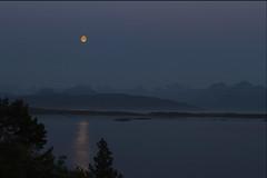 Moon in July