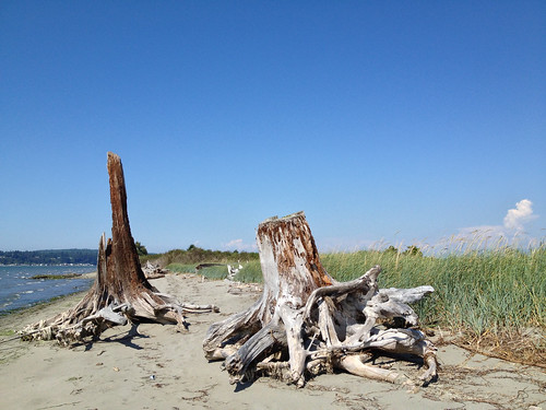 Jetty Island, WA