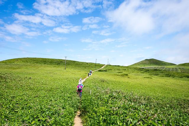 礼文島 愛とロマンの逆8時間コース/Rebun Island