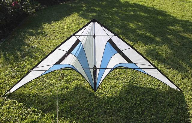 Kites August-1260