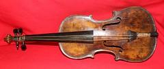 bowed string instrument, string instrument, violone, string instrument,
