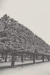 Park Jean XXIII