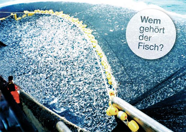 Wem gehört der Fisch?