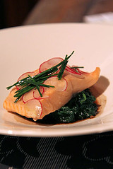 salmon with spinach IMG_9613 R
