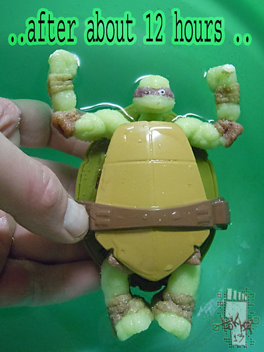 WICKED COOL TOYS :: Nickelodeon TEENAGE MUTANT NINJA TURTLES; 'WATER GROW TURTLES' - DONATELLO ix // ..after 12 hours  (( 2013 ))