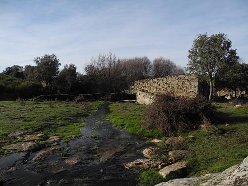 Molino en la rivera
