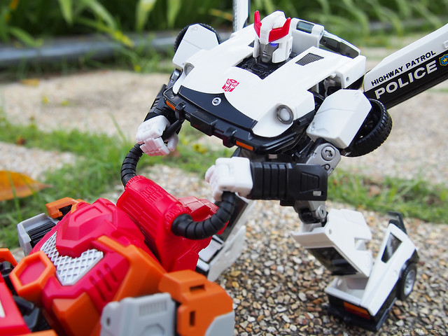 Bovis vs Prowl