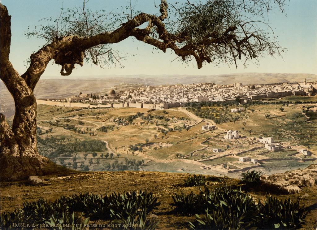 12. Otra vista de la ciudad santa, en 1895. Autor, Trialscopus