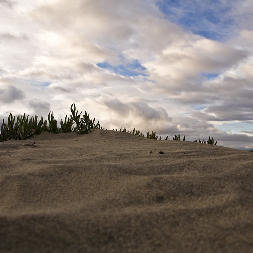ocean california sky color beach clouds island sand nikon pacific sandiego northisland coronado d90
