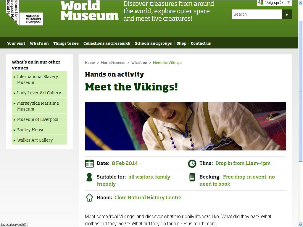 lære om vikinger