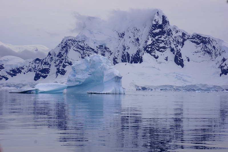 antarctic 3 base brown 135