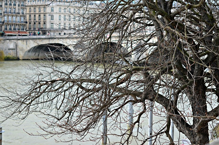 DSC_4964 Seine Paris