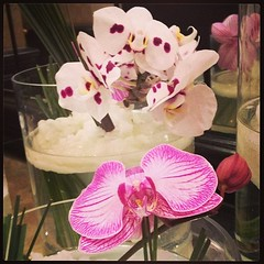 #flowers #pretty #flemingsmayfair #hotel #mayfair #london