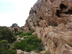 Descente du Capu Rossu : le sentier de retour le long d'un mur de rochers